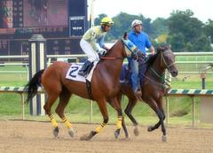"2015-08-23 (12) r1 Larry Mejias on #2 Track Magnet (JLeeFleenor) Tags: photos photography md marylandracing laurelpark jockey جُوكِي ""赛马骑师"" jinete ""競馬騎手"" dżokej jocheu คนขี่ม้าแข่ง jóquei žokej kilparatsastaja rennreiter fantino ""경마 기수"" жокей jokey người horses thoroughbreds equine equestrian cheval cavalo cavallo cavall caballo pferd paard perd hevonen hest hestur cal kon konj beygir capall ceffyl cuddy yarraman faras alogo soos kuda uma pfeerd koin حصان кон 马 häst άλογο סוס घोड़ा 馬 koń лошадь bay maryland"