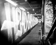 (Rodosaw) Tags: street chicago art photography graffiti head culture chub documentation suey d30 facts subculture wyse of ckue