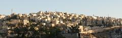 Jebel al-Ashrafieh from Jebel Amman (jrozwado) Tags: asia amman middleeast mosque jordan islamic circassian syrian   armenianapostolic abudarwish   stthaddeus stephraim   alashrafieh