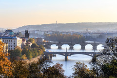Autumnal Prague (Joe Wakeford) Tags: bridge autumn trees sunset orange dog sun cold fall coffee leaves sunshine yellow cake forest woodland river garden pumpkin basket prague prag praha praga romance romantic bushes vltava autumnal praguecastle prahacharlesbridgekarlvmostprague