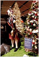 Renault 4CV ? DSCI8520 (aad.born) Tags: christmas xmas weihnachten navidad noel  tuin engel nol natale  kerstmis kerstboom kerst facebook boi kerststal  kribbe versiering kerstshow renault4cv  kerstversiering kerstballen kersfees kerstdecoratie tuincentrum kerstengel  attributen kerstkind kerstgroep fotomomentje aadborn nativitatis