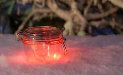 Noël en pot de lumières, Christmas Lights In Pot (Explored) (francepar95) Tags: winter snow magic hiver christmaslights pot surprise neige noël extérieur couleur magie conserve étonnant lumièresdenoël