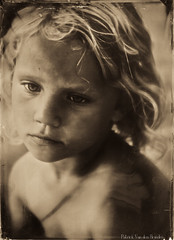 Capucine (patrickvandenbranden) Tags: portrait blackandwhite bw monochrome childhood focus soft child noiretblanc ambrotype wetplate enfant largeformat alternative 5x7 alternativeprocess enfance collodion 13x18 procédéalternatif