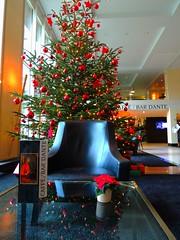 Weihnachtsbaum im Radisson Hotel (Sophia-Fatima) Tags: caffè bardante wunderbar radissonblusenatorhotel lübeck schleswigholstein deutschland weihnachtsbaum weihnachten advent christmas christmastree