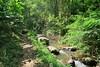 IMG_3630 (JoStof) Tags: indonesia bali munduk hike jungle indonesië idn