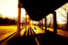 Long shadows shelter (vinnie saxon) Tags: shelter nature park bench shadows light creative lines pattern backlight landscape trees fall