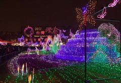 Taiwan Lantern Festival (Bay and Basin Camera Club) Tags: bbcc commended nightshots