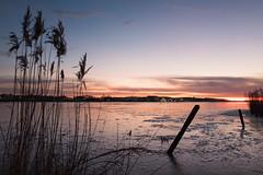L1000909.jpg (auke.vanderveen) Tags: winter zoutkamp groningen reitdiep water