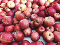 Healthy Eating Food And Drink Food Fruit Red Freshness Full Frame Backgrounds No People Large Group Of Objects For Sale Indoors  Close-up Day Apple Apples מייאייפון7 מייתרשיחא מייפוד (dinalfs) Tags: healthyeating foodanddrink food fruit red freshness fullframe backgrounds nopeople largegroupofobjects forsale indoors closeup day apple apples מייאייפון7 מייתרשיחא מייפוד