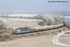 2017.01.10 | 242 256-6 Herend (Davee91) Tags: mvá plehács train hungarian railways herend awt advanced word transport