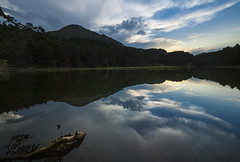 Inspiring (Paco CT) Tags: accidentegeografico agua arbol bassadoles bosque escenario lago landform paisaje reflejo topografia topography tree forest lake landscape place reflection scenary water wood lleida spain esp nature inspiring calm quiet tranquil outdoor pyrenees pacoct 2017