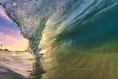 Sandys water color (MICHAEL A SANTOS) Tags: saintsphotography michaelasantos paradise liquideyewaterhousingc1795 liquideyewaterhousings hawaii hawaiianbeaches hawaiibeaches ocean sunrise sunrays beach sandys eastside eastshore canon7d canon rokinon8mmfisheye surfphotography surfhousing