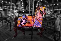 Carousel (Maxum1201) Tags: carousel karrusell pferd horse royalcaribbean ship fun