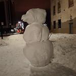 Snowbird thumbnail