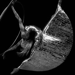 The Dancer (James*J) Tags: monochrome black white bw statue dancer metal barcelona spain catalonia cathedral holy cross saint eulalia rivets art loop square format composition manmade human woman female julio nieto sculpture