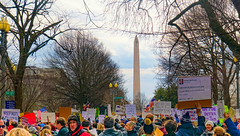 2017.01.29 No Muslim Ban Protest, Washington, DC USA 00269