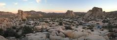 Joshua Tree National Park (Svedek) Tags: usa california panorama landscape nature stones rock joshua tree park