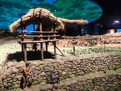 Diorama (roamingtummy) Tags: taichung taichungcity taiwan tw theroamingtummy nationalmuseumofnaturalscience travel museum