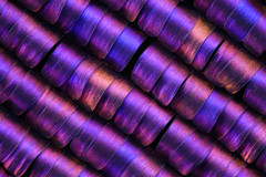 267pics_3steps_Nikonmp20elwd_20zu1_4k (makrosucht) Tags: nikon balgen stackshot m plan 20 elwd sun moth stack