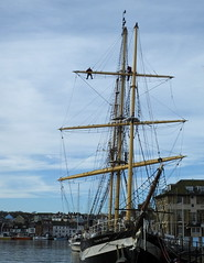 In the rigging.... learning the ropes..... up the mast without a paddle??? lol... (Sue - happy sparrow) Tags: weymouthharbour weymouth pelican ship tallship climbing rigging sailing sailingship upthemast