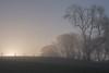 Misty Sunrise (warth man) Tags: d750 nikon70300mmvr sunrise mist mistysunrise landscape trees southlakeland englishlakedistrict