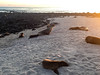 San Cristóbal Island, Galápagos Islands (Quench Your Eyes) Tags: charlesdarwin galapagosislands islasgalã¡pagos pacificocean thegalã¡pagosislands westernhemisphere biketour bikepacking ecuador island santacruz southamerica thegalapagosislands travel wildlife sancristóbalisland islasgalápagos thegalápagosislands