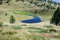 20150829_080 (southernman61) Tags: italy alps trentino lagorai d7000
