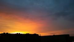 Impressions - Vivid sunset after glowing  - Samsung Galaxy S5 (eagle1effi) Tags: sunset sun silhouette contrast vivid samsung kontrast siluetas s5 vividcolors damncool herma filderstadt bonlanden siluetta artexpression regionstuttgart eagle1effi blocklager samsunggalaxys5 sunset sunsetafterglowing
