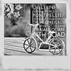 Raindrops keep falling on my head ... (Feathering the Nest) Tags: bike bicycle polaroid mono bokeh grunge frame mug processed cheltenham onyerbike befunky chelters