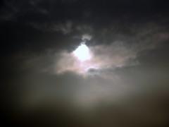 Bright Spot (Khaled M. K. HEGAZY) Tags: sky cloud white black macro nature closeup nikon outdoor egypt cairo coolpix maadi    p520