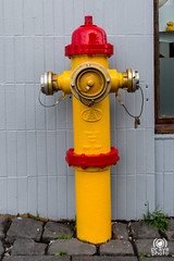 Yellow hydrant (andrea.prave) Tags: red yellow jaune hydrant island iceland islandia amarillo gelb giallo rosso reykjavk islande islanda  idrante