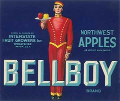 """Bellboy • <a style=""""font-size:0.8em;"""" href=""""http://www.flickr.com/photos/136320455@N08/21283890118/"""" target=""""_blank"""">View on Flickr</a>"""