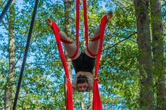 King Richards Faire 9-19-2015 202.jpg (jlucierphoto) Tags: hot sexy upsidedown outdoor massachusetts babe swing carver swinging performer aerialist lovelyflickr kingrichardsfaire2015