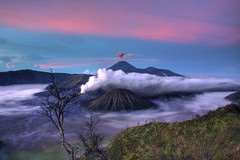 Semeru Volcano in Indonesia (Image Catalog) Tags: volcano outdoor background smoke horizon scenic semeru publicdomain fumes activevolcano mountsemeru volcanicgas semeruvolcano