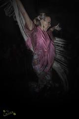 Bailadora (fuerza y carcter...) (alfrelopez) Tags: alfredo flamenco folclore bailadora fuerza alfrelopez