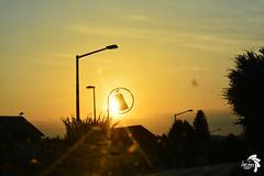 MH_0237 (Heimfotografie_) Tags: camera city morning travel sunset orange cloud sun black yellow shop skyline clouds shopping photography austria photo österreich nikon heaven foto fotografie cloudy outdoor picture himmel laden gelb stadt aussicht nikkor sonne sonnenaufgang morgen schwarz ausblick dlsr früh nikk objektiv pielachtal wolen spiegelreflex spiegelreflexkamera eraly d5200 ausen nikond5200 heimfotografie