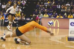 LSU VBall vs. Tenn. (OliviaPaigePhotographyXIX) Tags: lsu winner tigers volleyball tennesse sec vols