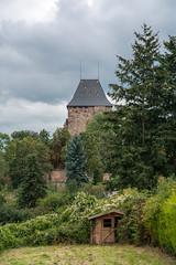 Nideggen (Richard van Hilten) Tags: germany deutschland dorf village dorp duitsland nideggen redvillage rodedorp rotesdorf