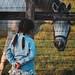 SAKURAKO - Breeding Race Horses.