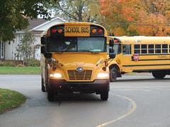 Plainwell Community Schools (Nedlit983) Tags: blue school bus bird vision propane