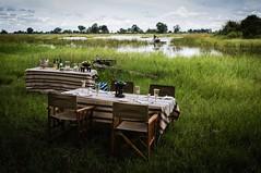 Image 19-11-15 at 15.37 (1) (goingafricasafaris) Tags: camp plains duba