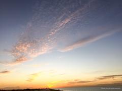 Beautiful sheep clouds at sunset (Frans en Gerdi) Tags: blue sunset 6 apple clouds sheep hour lelystad iphone oostvaardersplassen oostvaardersdijk