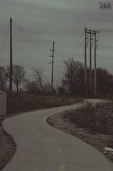 327/365 (yosoyjav!) Tags: road trees cold lines bike electric digital way walking dead nikon midwest industrial power ride pavement path walk dry iowa powerlines direction trail biking electricity poles 365 lightpoles dslr cedarrapids easterniowa project365 d7000 clubd7000