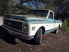 Chevrolet Cheyenne (Dave* Seven One) Tags: blue white rot chevrolet abandoned project junk rust peeling decay rusty chrome 350 forgotten v8 dents cheyenne c10 chevroletcheyenne