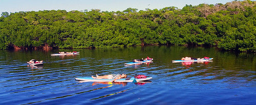 11_30_15 Paddleboard Yoga in Lido Mangroves FL 01