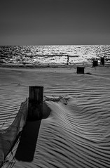 Walking the Line (A Durst Photo) Tags: ocean seascape beach water monochrome weather fence landscape photography coast sand place wind outdoor jetty south dune country australia land type geography sanddune southaustralia grange archtiecture 500px grangebeach typeofphotography ifttt