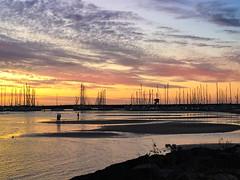Brighton Marina (Marian Pollock) Tags: australia melbourne brighton sunset silhouette birds people beach flats masts boats clouds thebestofmimamorsgroups cloud
