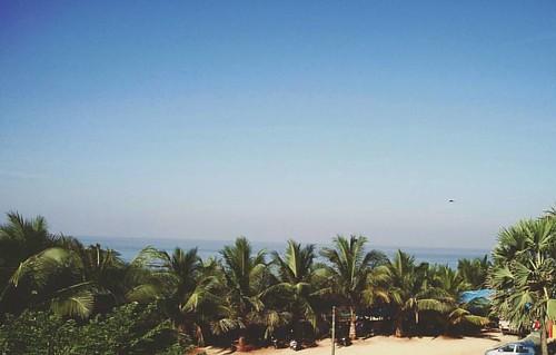 #ocean #beach #hotel #rooms #landscape #latemorning #trees #nature #sky #horizon