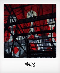 """#DailyPolaroid of 15-11-15 #48 • <a style=""""font-size:0.8em;"""" href=""""http://www.flickr.com/photos/47939785@N05/23791304395/"""" target=""""_blank"""">View on Flickr</a>"""