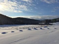 (Rock Water) Tags: hummocks snow mysteries winter